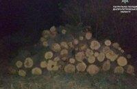 На Днепропетровщине задержали незаконных лесорубов