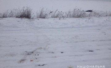 В Днепропетровской области в поле нашли окровавленный труп мужчины (ФОТО)
