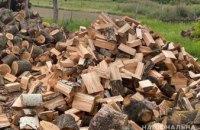 """Изъято 100 кубов древесины: в Днепропетровской области задержана группа """"черных лесорубов"""""""