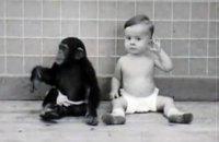 После шести лет ребенок должен развиваться активнее шимпанзе, - эксперт МЭП о важности школьного образования и социализации