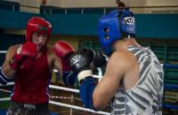 Спортсмены Днепропетровщины завоевали 38 медалей на чемпионате Украины по таиландскому боксу Муэй Тай