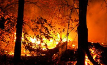 В Днепропетровской области объявлена чрезвычайная пожарная опасность