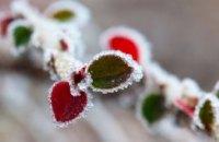 На этой неделе температура на Днепропетровщине опустится до 7 градусов мороза, - синоптики