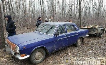 На Днепропетровщине задержали мужчину со спиленной древесиной