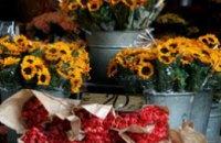 В Днепродзержинске состоятся ярмарки по продаже живых цветов