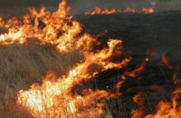 В Черниговской области местные жители избили спасателей во время тушения пожара