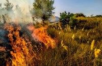 В Вольногорске выгорело полгектара сухой травы (ФОТО)