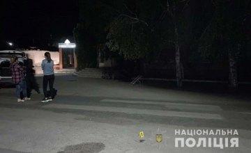 Полицейские Никополя задержали 18-летнего парня, который до смерти избил местного жителя