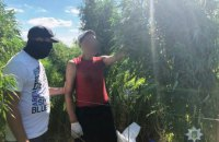 Под Киевом полицейский дрон «нашел» огромную плантацию конопли (ФОТО, ВИДЕО)