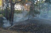 В Днепре спасатели почти два часа тушили  лесной пожар