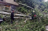 В Днепре на спецлинию «101» поступило около 200 сообщений о последствиях непогоды