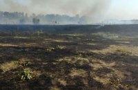 В Царичанском районе горел камыш: огонь уничтожил 2,4 га наземной экосистемы (ФОТО)