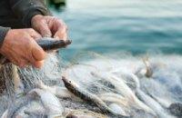 Штрафы за незаконный вылов рыбы увеличены в разы: во сколько правонарушителям обойдется сом, карась и щука