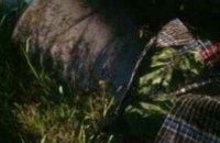 В Запорожской области изъяли опий на полмиллиона гривен