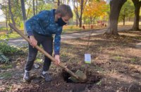 Вже 260 дерев висадили в місті на території підпорядкованих закладів департаменту соціальної політики в рамках декадника # Дніпро_квітучий