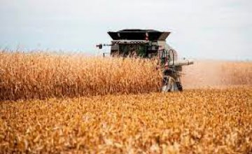 Днепропетровщина возглавила всеукраинский рейтинг производителей сельского хозяйства