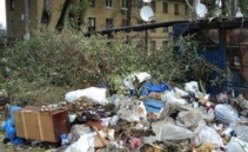 В Томаковском районе ликвидировали 56 стихийных свалок