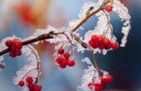 На Рождество в Украину придут холода