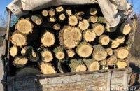 На Днепропетровщине задержали браконьеров с полным кузовом спиленных деревьев