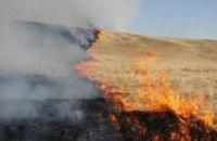 Этой весной на Днепропетровщине более 300 раз горела сухая трава и стерня