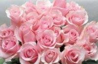 Цветы к 8 Марта подорожают на 150%