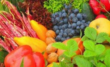 Госсанэпидемслужба Днепропетровска провела проверку продукции растениеводства на содержание нитратов