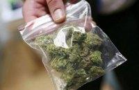 На Днепропетровщине 48-летний мужчина хранил дома марихуану