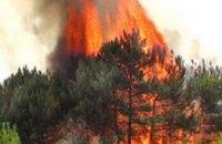 Чтобы избежать пожаров, на Днепропетровщине установят еще 7 камер наблюдения