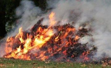 Жителей Днепропетровщины предупреждают – за костры из опавших листьев предусмотрены штрафы