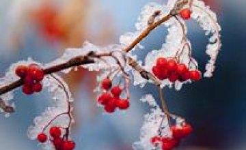 Спасатели рассказали о погоде в Днепропетровской области на Рождество