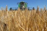Днепропетровщина начала собирать поздние зерновые культуры