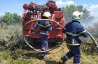 В Петропавловском районе произошел масштабный пожар в экосистеме: пострадало 2 га территории