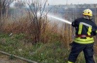 В Новомосковском районе горел сухостой (ФОТО)