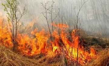 Верховная Рада поддержала введение штрафов в 6 тысяч гривен для поджигателей травы: разъяснения юриста