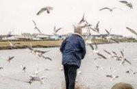 В Швеции зафиксирован первый случай птичьего гриппа H5N8