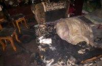 В Новомосковске произошел пожар в частном доме: 7-летний ребенок в реанимации
