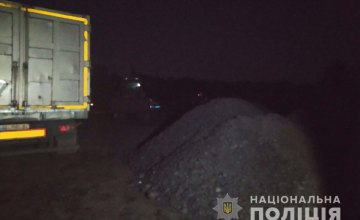 В Петропавловке похитили почти 20 тонн угля