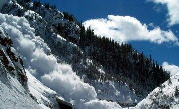 На Закарпатье сошла лавина в 40 тонн снега