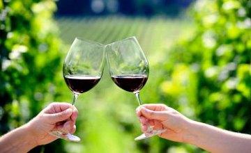 Ученые объяснили, чем полезно красное вино