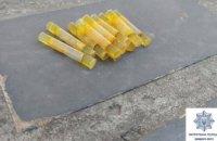 В Кривом Роге у горожанки обнаружили 12 пластиковых трубочек с амфетамином