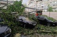 Падение деревьев и поврежденные авто: последствия непогоды на Днепропетровщине (ФОТО, ВИДЕО)