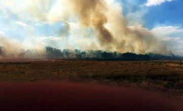 На Днепропетровщине в результате возгорания сухой травы пожар перебросился на заброшеную ферму