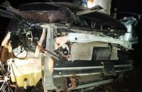 В Днепре 20-летний парень за рулем легковушки врезался в дерево (ФОТО)