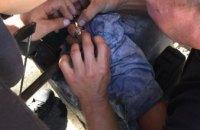 В Днепре спасатели помогли снять кольцо с пальца подростка (ФОТО)