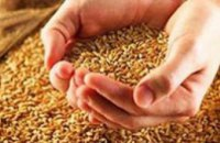 В Региональный стабилизационный фонд Днепропетровской области поставили почти 80 тыс тонн зерна