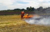 За сутки на Днепропетровщине произошло 85 возгораний сухостоя (ФОТО)