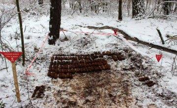 В лесу возле Киева нашли более 400 боеприпасов (ФОТО)