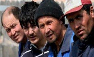 На Днепропетровщине выявили почти 3 тыс работников-нелегалов