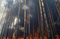За прошедшие сутки в Днепропетровской области сгорело 4 га леса