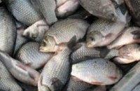 За январь на Днепропетровщине  задержали браконьеров за вылов рыбы на более чем 23 тыс. гривен